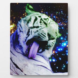 Rainbow Tiger Plaque