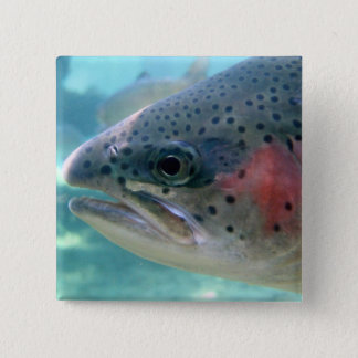 Rainbow Trout 2 Inch Square Button