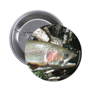 Rainbow trout pinback button