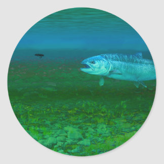 Rainbow Trout chasing a fly Classic Round Sticker