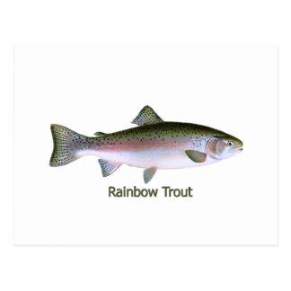 Rainbow Trout Fishing  Logo Postcard