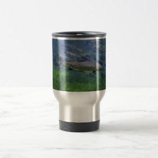 Rainbow Trout Coffee Mugs