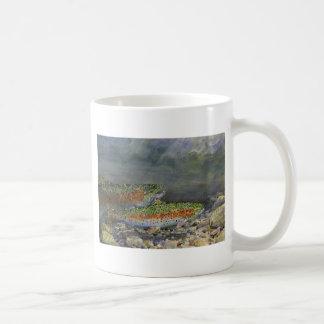 Rainbow trout mugs