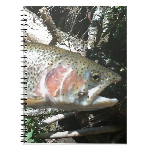 Rainbow trout notebook