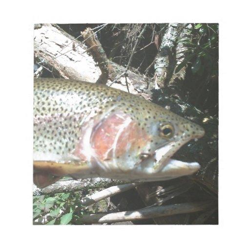 Rainbow trout memo pad