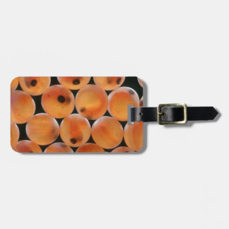 Rainbow Trout (Oncorhynchus Mykiss) Roe Bag Tags