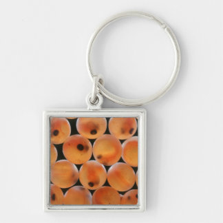 Rainbow Trout (Oncorhynchus Mykiss) Roe Silver-Colored Square Keychain
