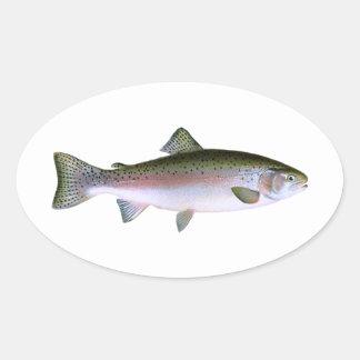 Rainbow Trout Oval Sticker