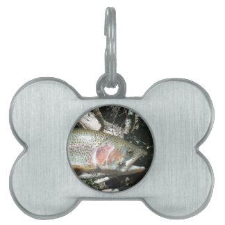 Rainbow trout pet ID tag