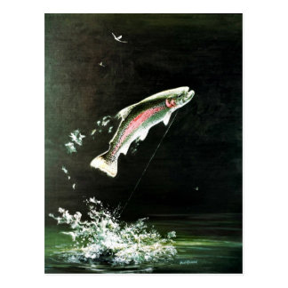 Rainbow Trout Postcard