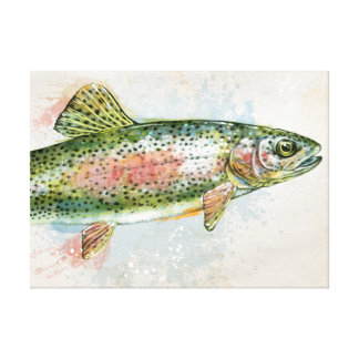Rainbow Trout Stretched Canvas Print