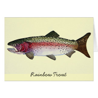 Rainbow Trout Watercolor Card
