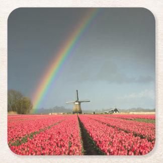Rainbow, tulips and windmill coaster
