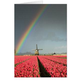 Rainbow, tulips and windmill greeting card
