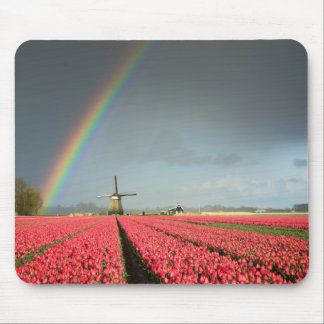 Rainbow, tulips and windmill mousepad