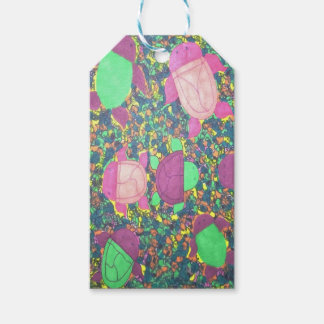 Rainbow Turtles on The Rocks Pack Of Gift Tags