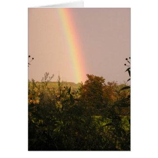 Rainbow Walk II Card
