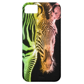 rainbowzebra iPhone 5 cases