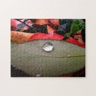 Raindrop on a Leaf Jigsaw Puzzle