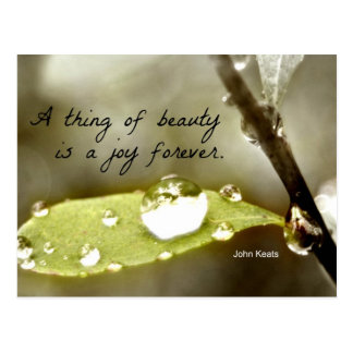 "Raindrop on leaf, with quote: ""A thing of beauty"" Postcard"