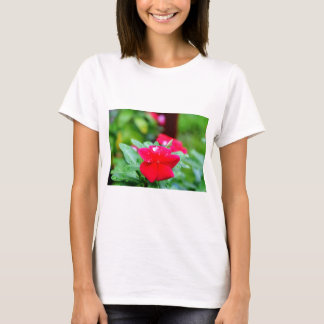 RAINDROP ON PINK FLOWER QUEENSLAND AUSTRALIA T-Shirt