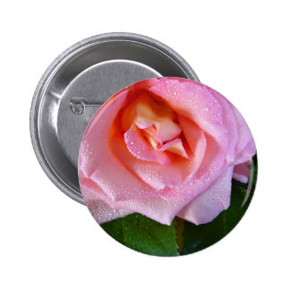 raindrop-rose 2 inch round button