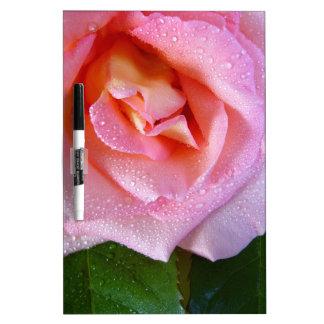 raindrop-rose dry erase board