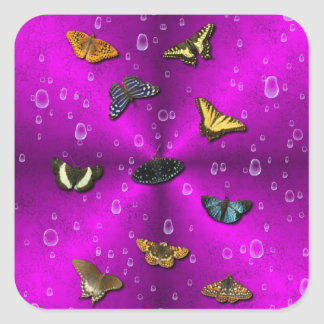 Raindrops and Butterfly on pink Square Sticker
