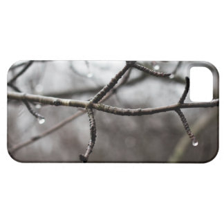 Raindrops Branches Case For The iPhone 5