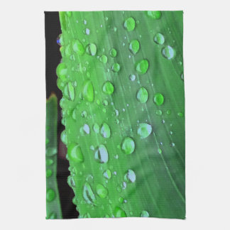 Raindrops Closeup, Spacey Green Kitchen Towels