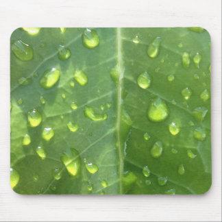 Raindrops on a Leaf Mouse Pad