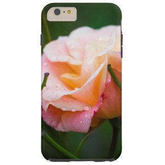 Raindrops on a rose tough iPhone 6 plus case
