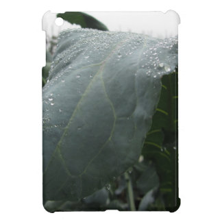 Raindrops on cauliflower leaves case for the iPad mini