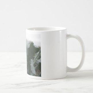 Raindrops on cauliflower leaves coffee mug