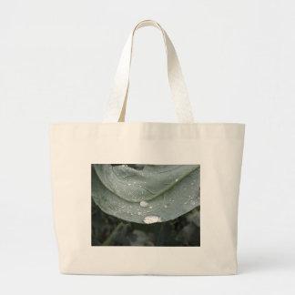 Raindrops on cauliflower leaves large tote bag