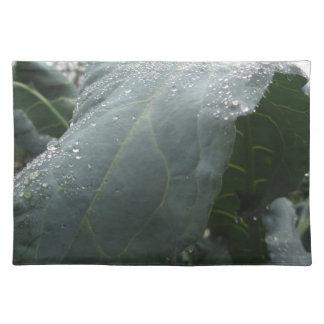 Raindrops on cauliflower leaves place mats
