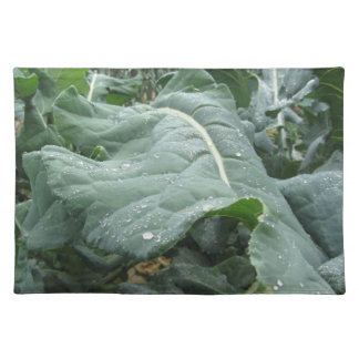 Raindrops on cauliflower leaves placemat