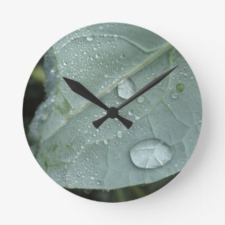 Raindrops on cauliflower leaves round clock