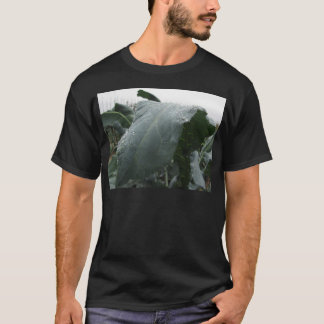 Raindrops on cauliflower leaves T-Shirt