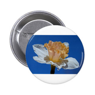 Raindrops on Daffodils 2 Inch Round Button