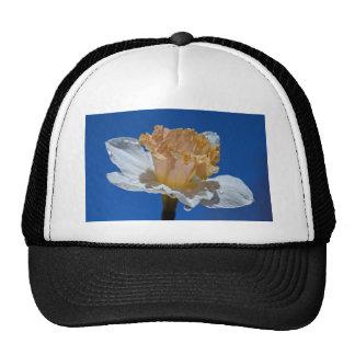 Raindrops on Daffodils Trucker Hat