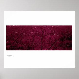 Raindrops on Dogwood (Cornus sanguinea) Poster