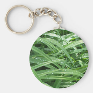 Raindrops on Green Leaves Basic Round Button Keychain