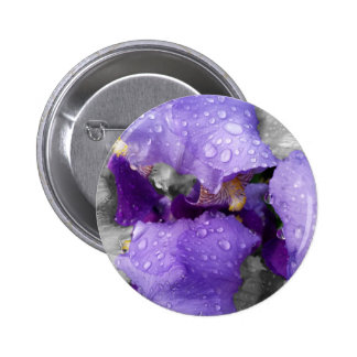 raindrops on iris 2 inch round button