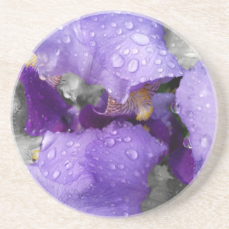 raindrops on iris coaster
