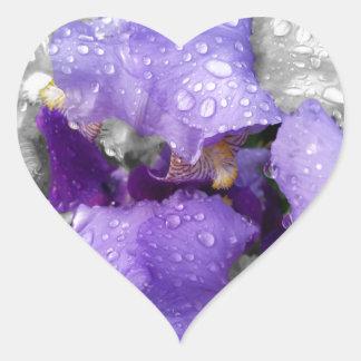 raindrops on iris heart sticker