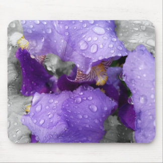 raindrops on iris mouse pad