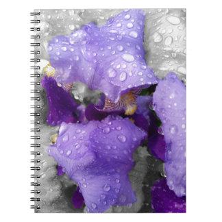 raindrops on iris notebook