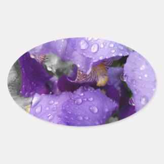 raindrops on iris oval sticker