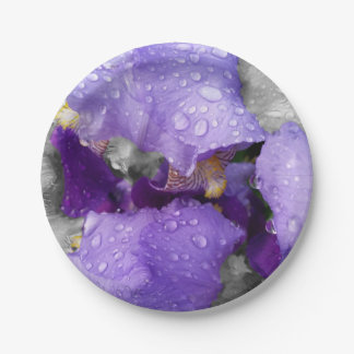 raindrops on iris paper plate